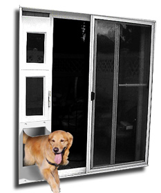Pet Door with Windows
